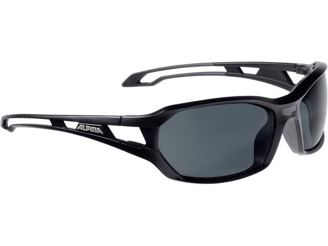 Alpina Berryn CM+ Glasses black matt